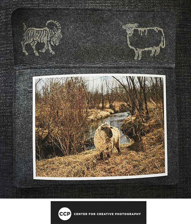 ccp-aquires-rj-kern-the-sheep-the-goats.jpg