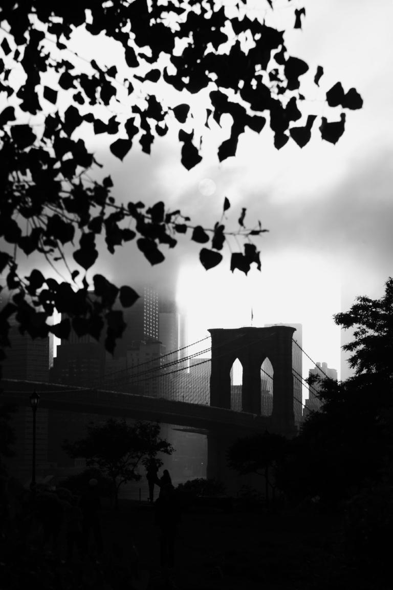 Brooklyn Bridge Park. Brooklyn, NY