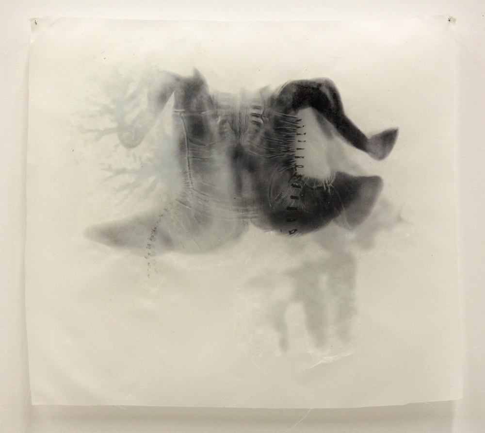 """Dualism I,"" Toner transfer on waxed silk, 10"" x 11,"" 2015"