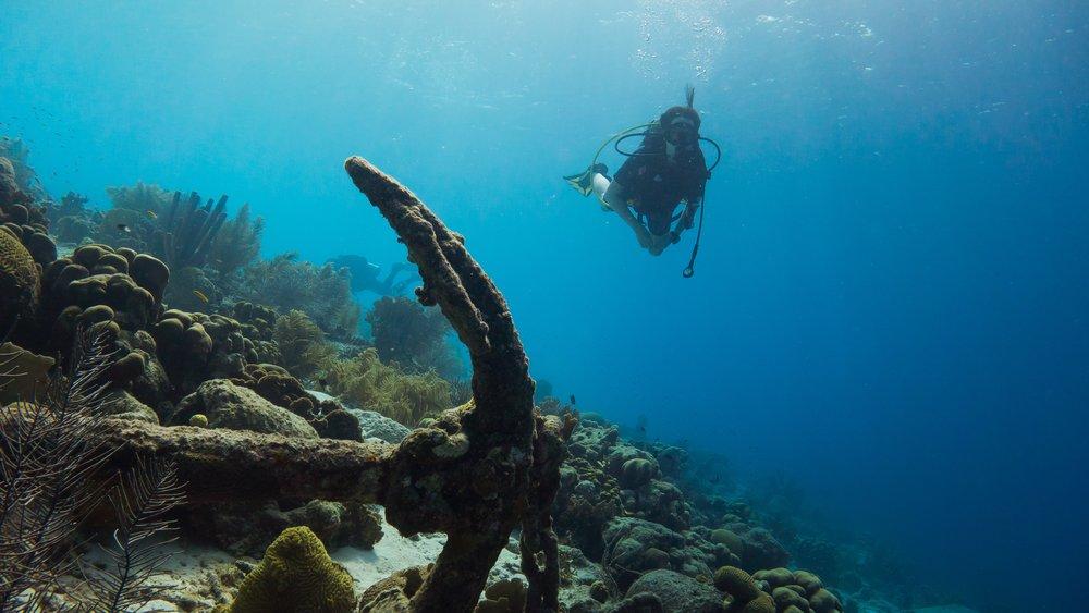 Locanda La Gelsomina scuba diving