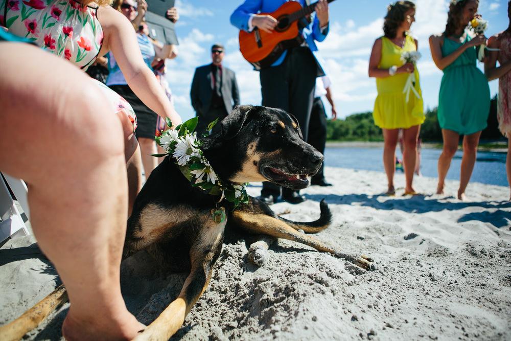 halifax-wedding-photography (48 of 137).jpg