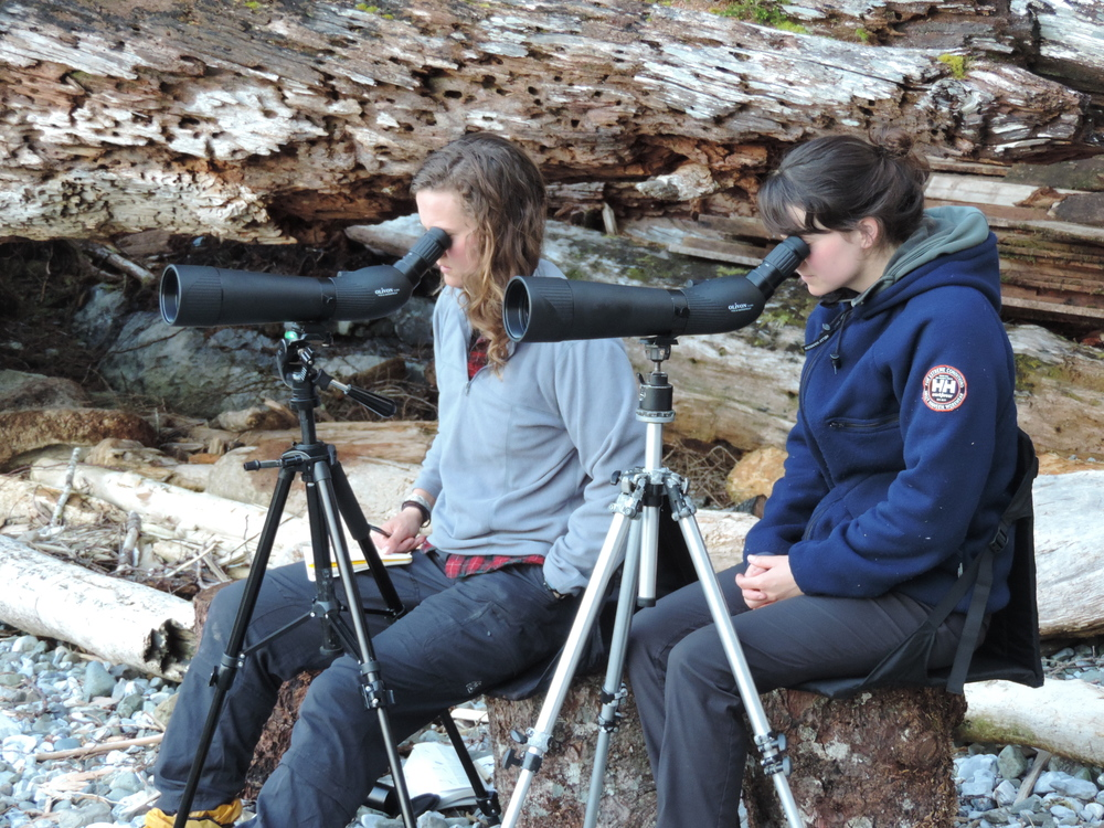 Viv and Ellen counting Ancient Murrelets.JPG