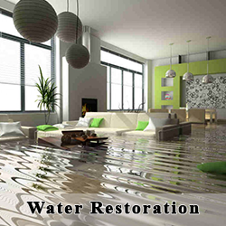 Barclay's Carpet Care -  Water Restoration