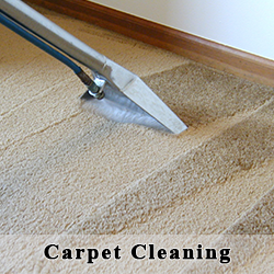 Barclay's Carpet Care - Carpet Cleaning