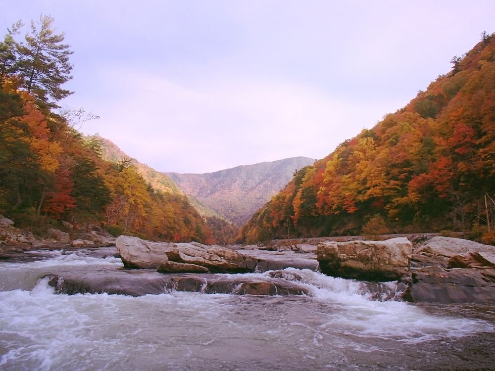 Nolichucky Gorge Whitewater in Fall