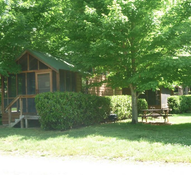 Cozy Cabin 1 yard and picnic table