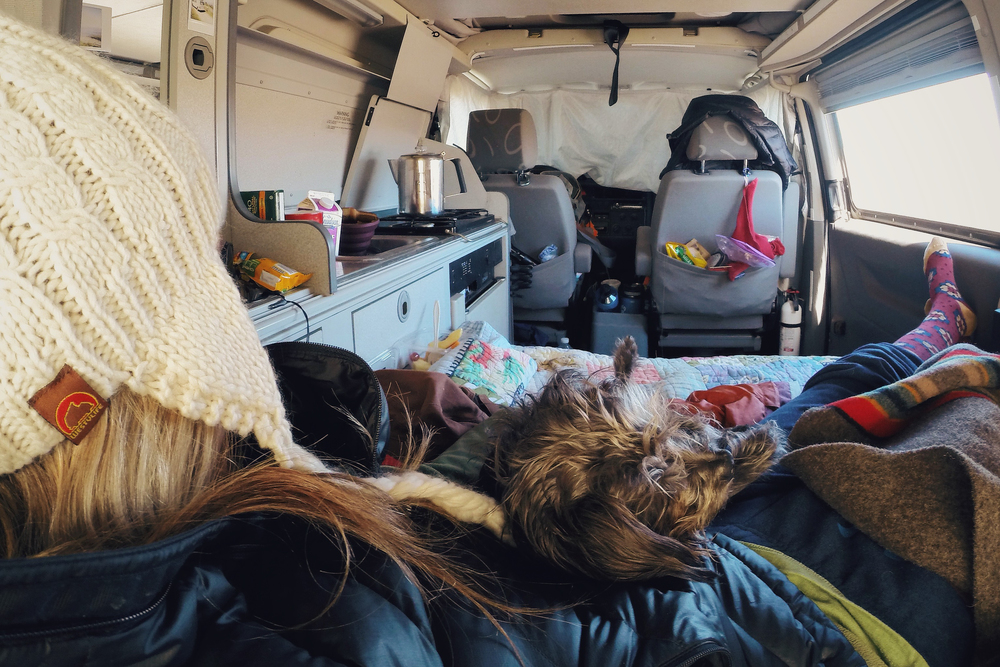 My vanlife reality.  It's not always photo perfect in a forest or all alone in the desert.  Here we are waking up in a Walmart parking lot.  All of my favorite things are in this photo. Some are listed below...