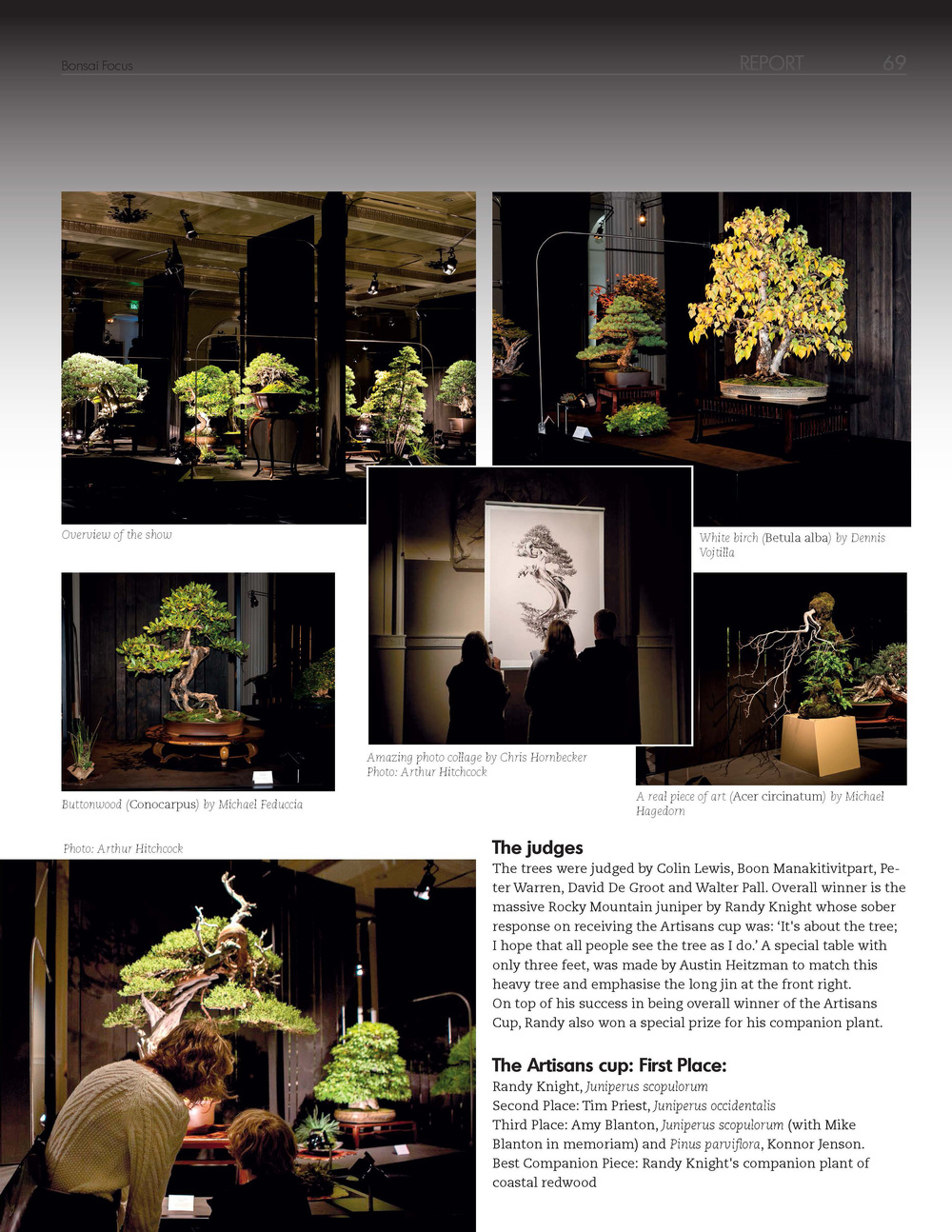 Bonsai_Focus_Page_2.jpg