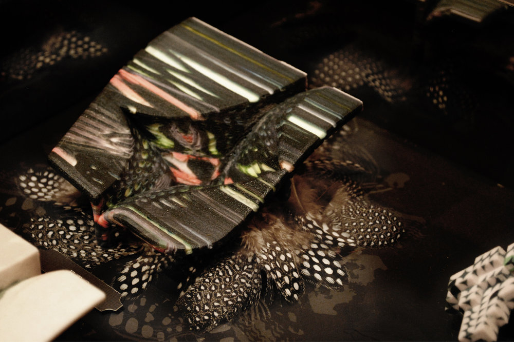 feathermodel.jpg