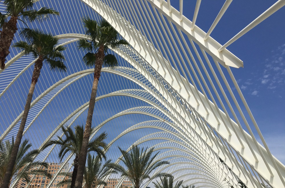 L'Umbracle- perfect spot for people watching under the palm trees