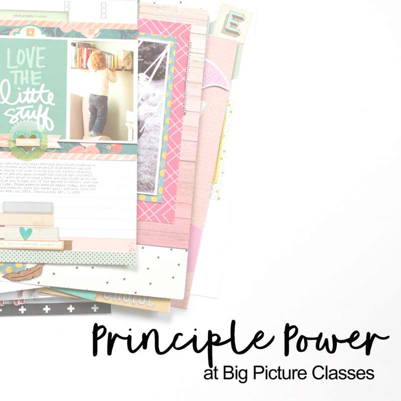 PRINCIPLE POWER AT BIG PICTURE CLASSES
