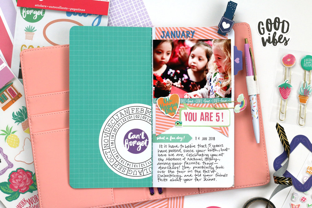 AmericanCrafts_MeghannAndrew_JournalStudioCollection_HelloLizzyNotebook_02.jpg