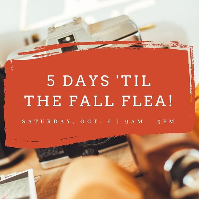 Fall is here and we can't wait to celebrate our favorite season with you. You bring your friends, we'll bring the vintage dealers, pumpkins, food and beer. Join us this Saturday from 9 a.m. to 3 p.m. in Midtown.