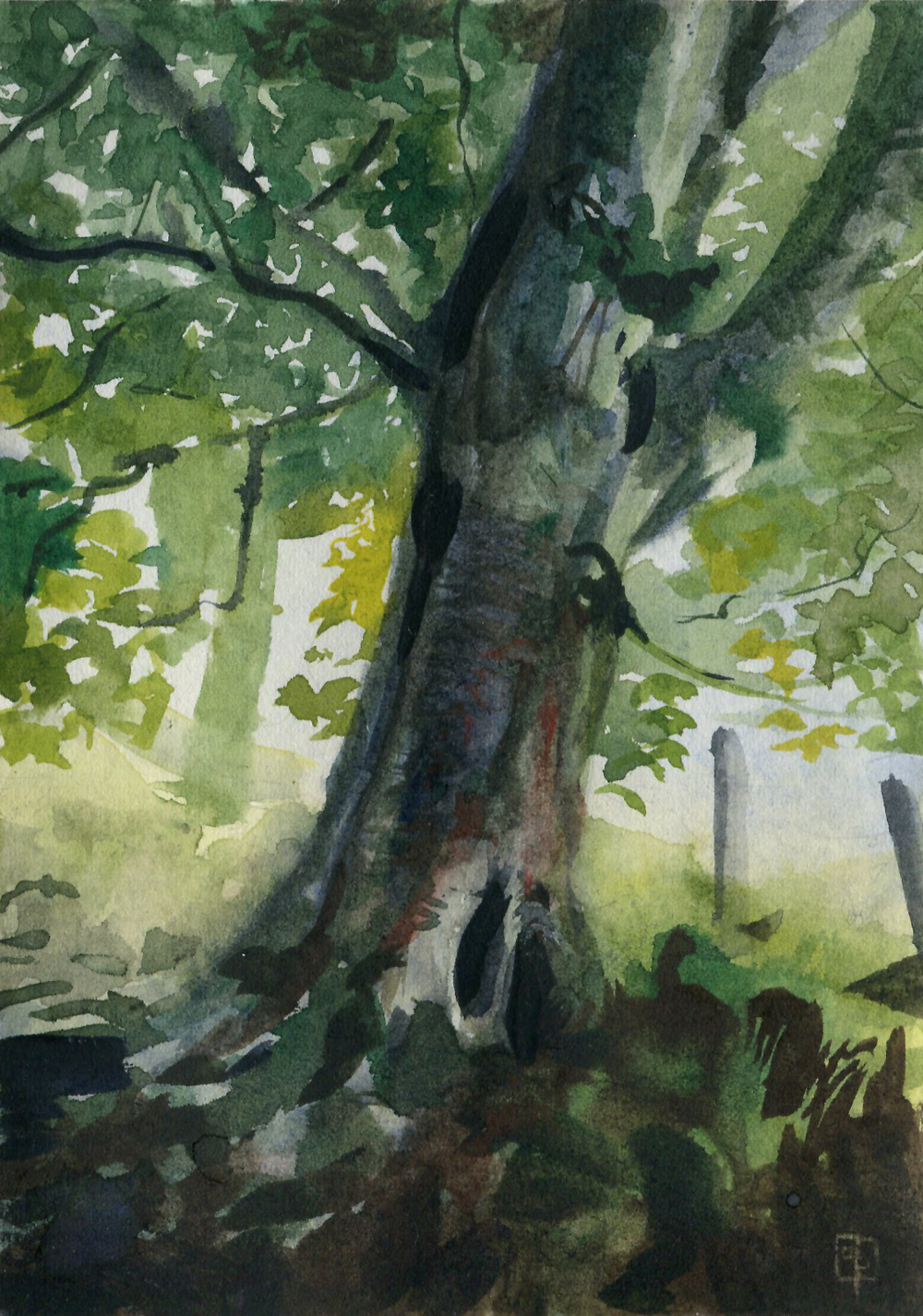 tree3_Stone-Pirrie_Casey.jpg
