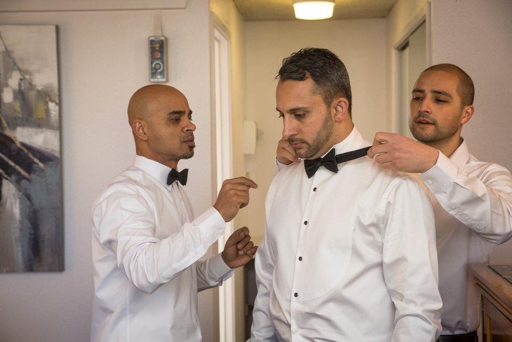 Rukshana and Alastair De Rozario Wedding - MCP - Picks - 4000px - 28th October 2016 (3).jpg