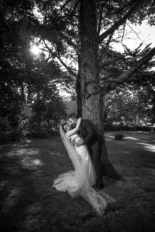 Rukshana and Alastair De Rozario Wedding - MCP - Picks - 4000px - 28th October 2016 (37).jpg
