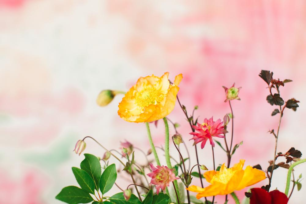 Love Lit Wedding Photography - Frida-24.jpg