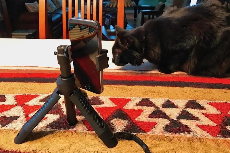 Cat meets iKlip Grip Pro tripod. Photo ©2016, Steven Sande