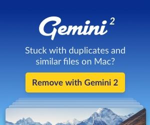 Gemini 17.jpg