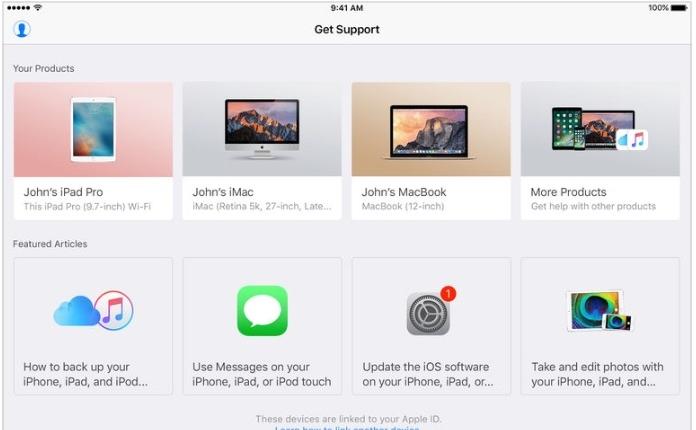 Apple Support Screen.jpeg