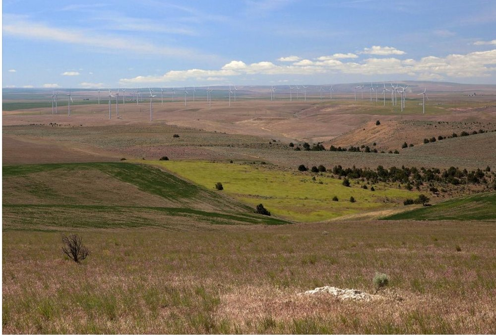 photo image Apple's wind farm project developer wants bigger, but fewer, turbines