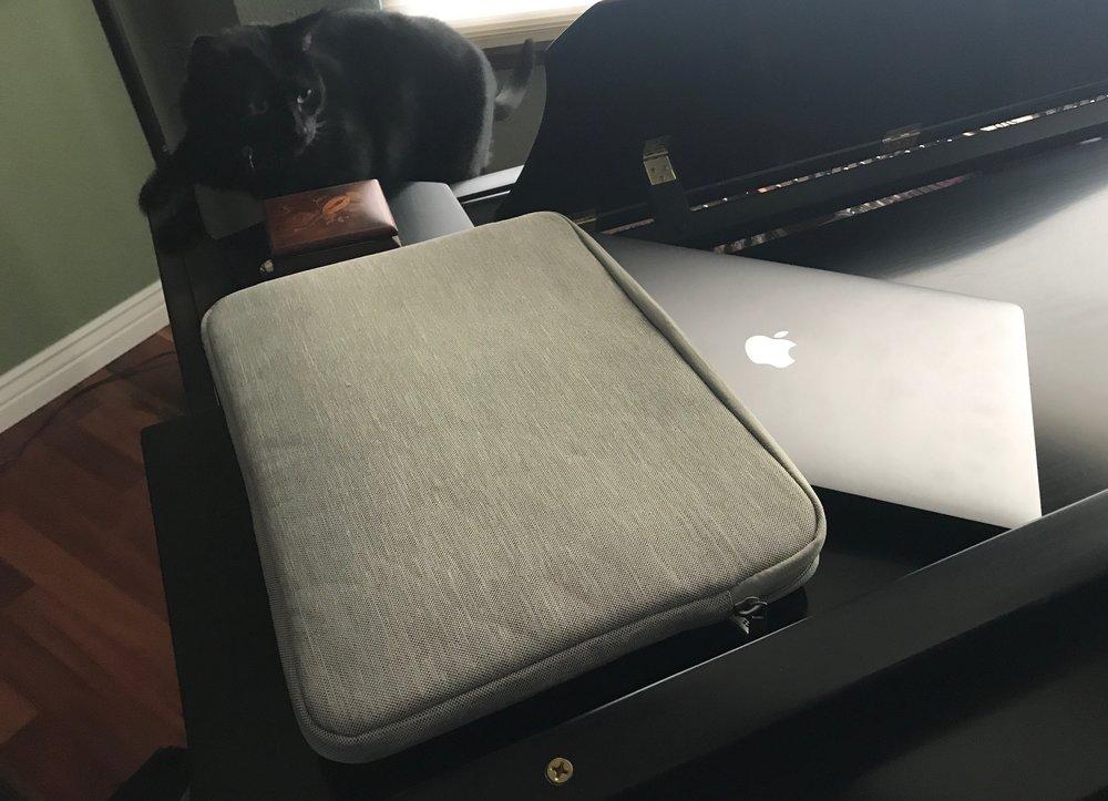 Cat stalking ATailorBird 13-inch Laptop Sleeve. Photo ©2017, Steven Sande