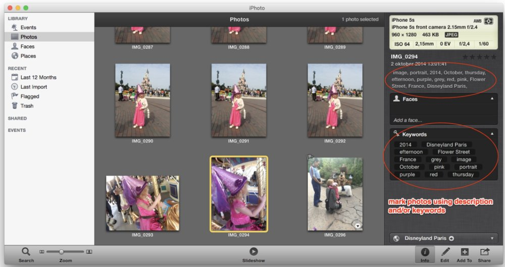 PhotoBee screen.jpeg
