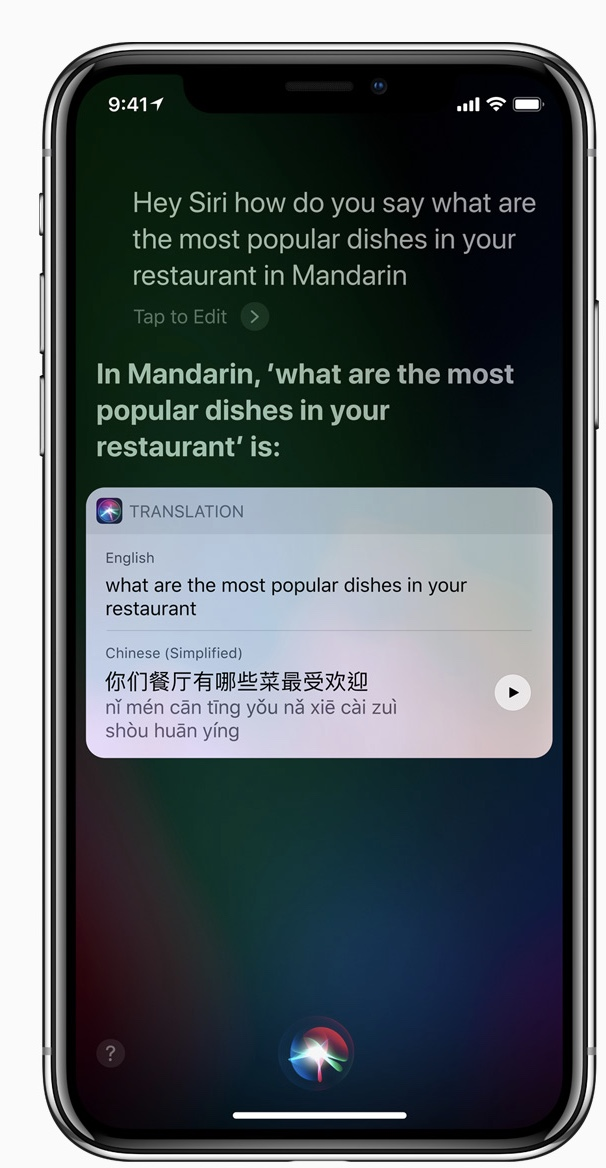 Siri Translate.jpeg