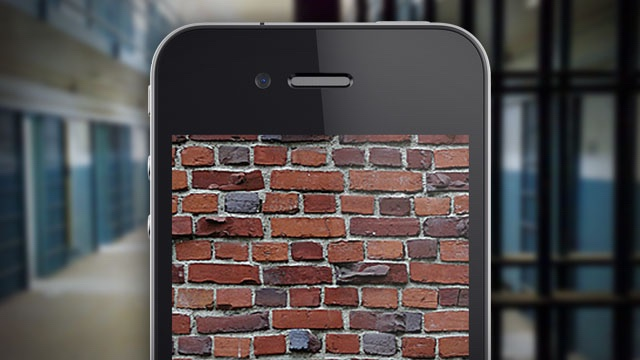 Bricked iPhone.jpg