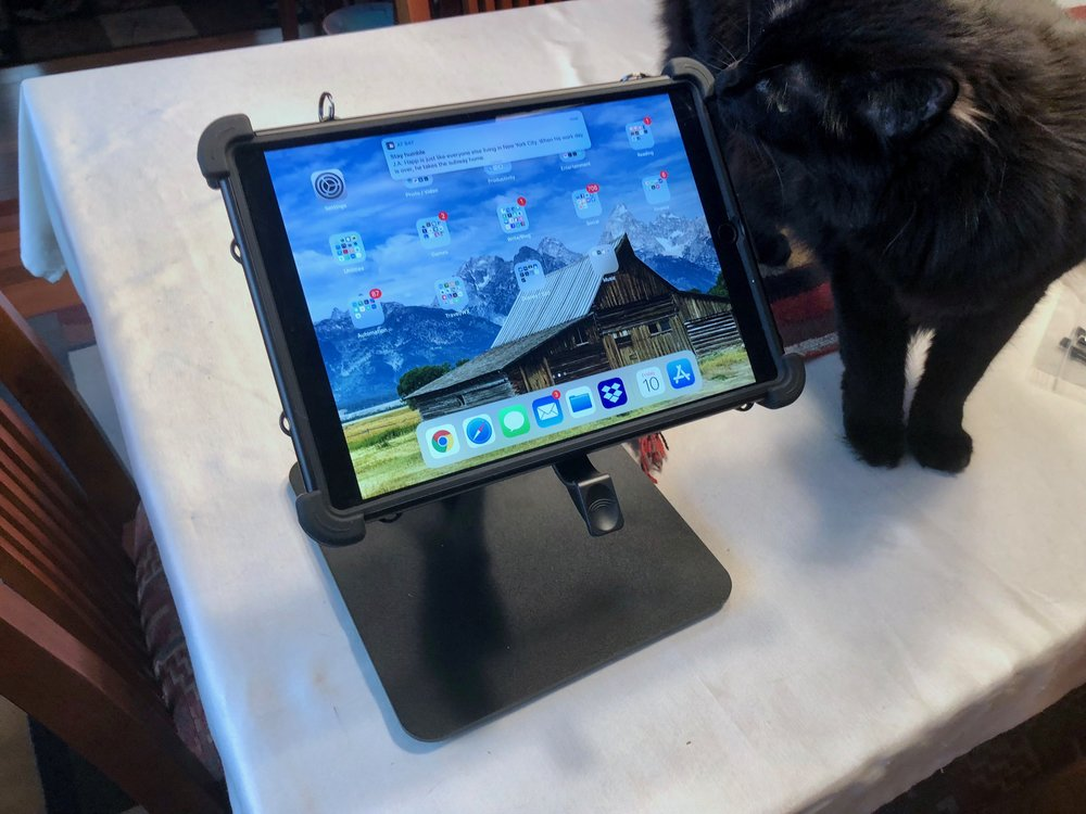 MobileDemand Rugged Case for 10.5-inch iPad on mounting stand. Cat-tested, cat-approved. Photo ©2018, Steven Sande