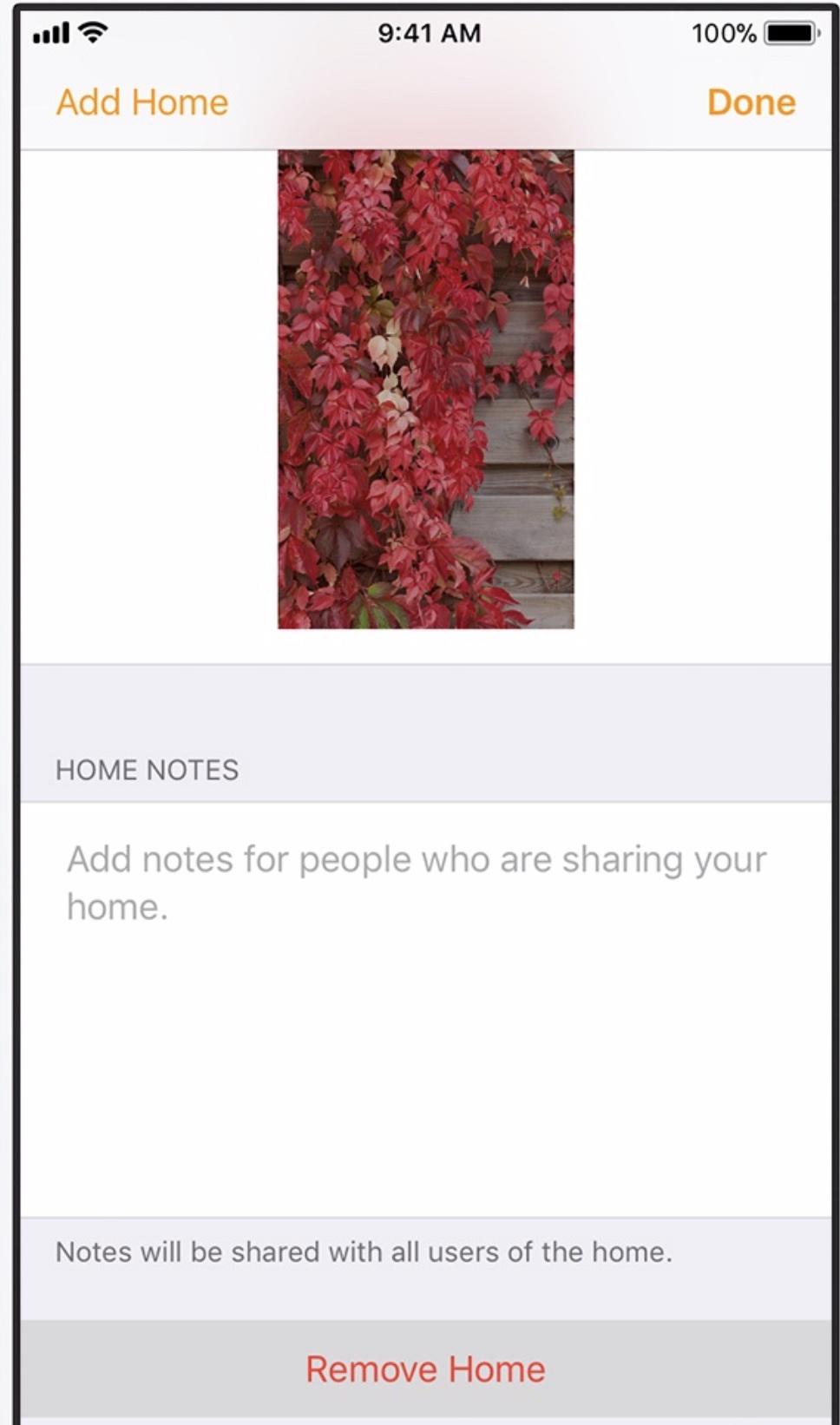 Home app.jpg
