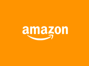 photo of Petition asks Amazon to allow libraries to purchase its digital books image