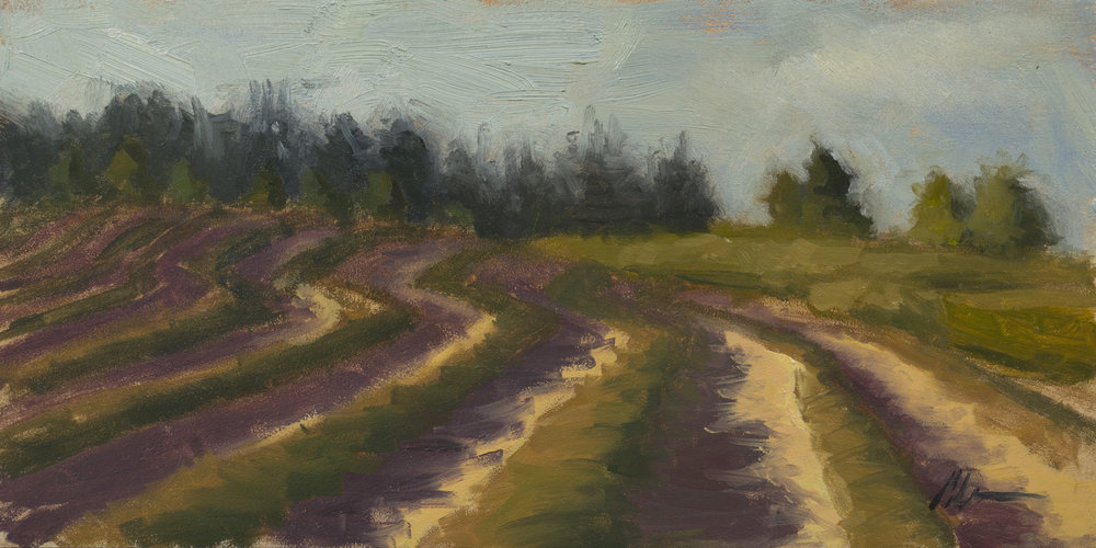 """Color Study: Cut Hay"", 6x12, oil on panel"