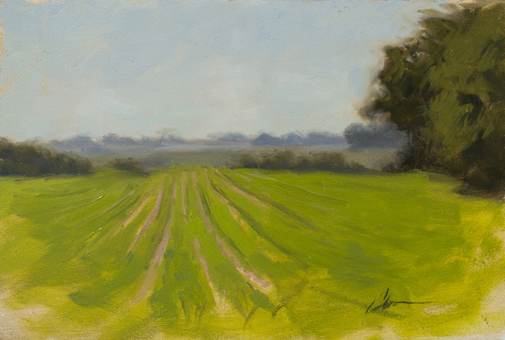 """Color Study: Rows of Abundance"", 6x9, oil on panel"