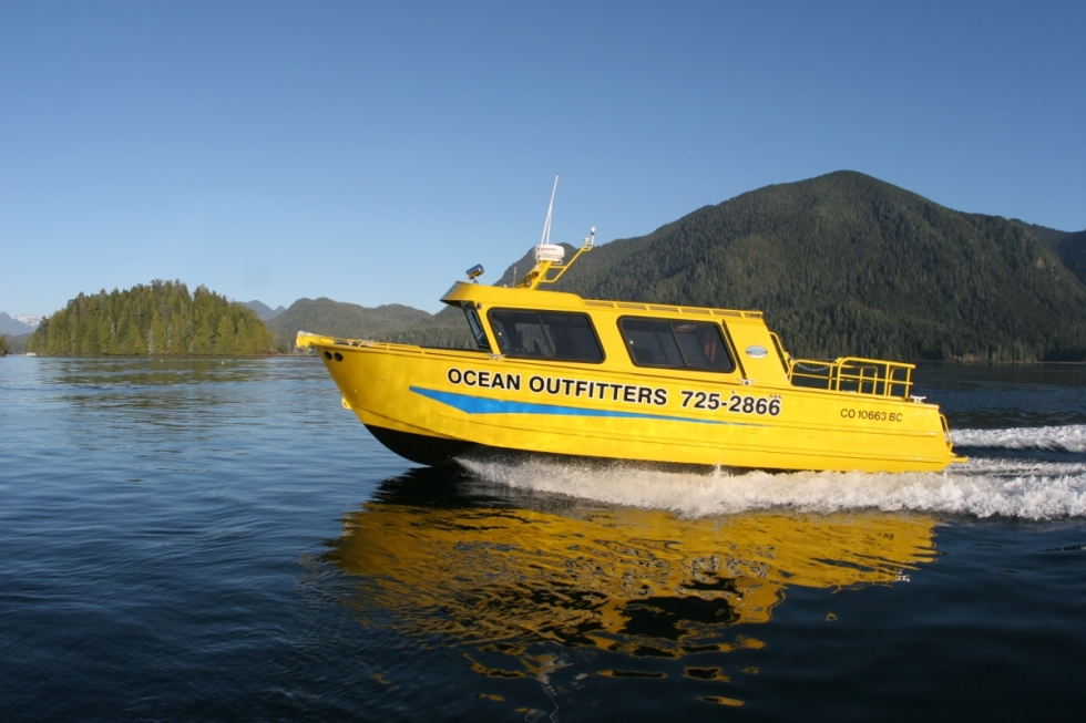 Tofino, Whale Watching, Bear Watching, Covered Boat, Tours, Adventure