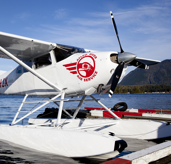 Whale Watching, Tofino, Plane, Adventure, Sea to Sky, Tours, Bear Watching, Nature, Ocean, Hot Springs