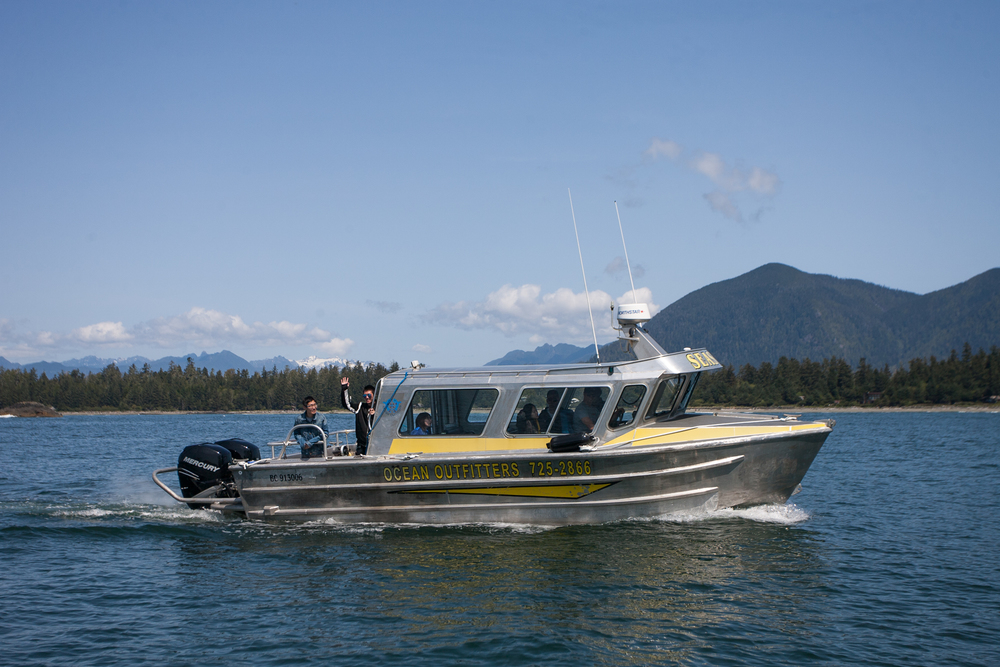 Whale Watching, Tofino, Bear Watching, Hot Springs Cove, Covered Boat, Tours, Adventure, Sea Star