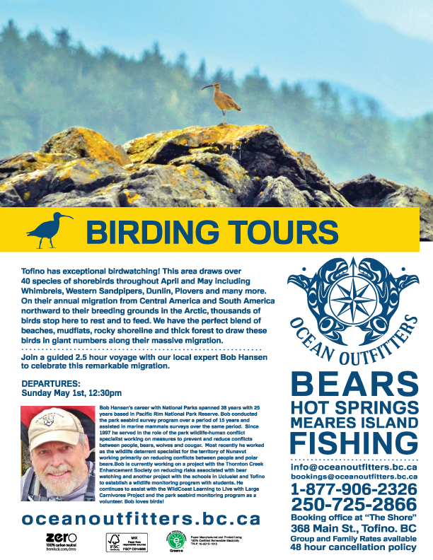 Wildlife, birds, whales, bears, salmon, workshop, tours, tofino, adventure, hot springs, ocean outfitters