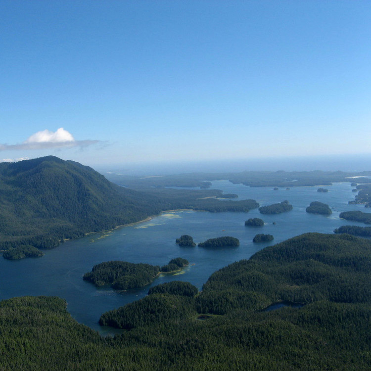 View from top of lone cone hike in Tofino, BC.