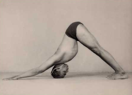 Light on Yoga, BKS Iyengar,  ©1966, page 110