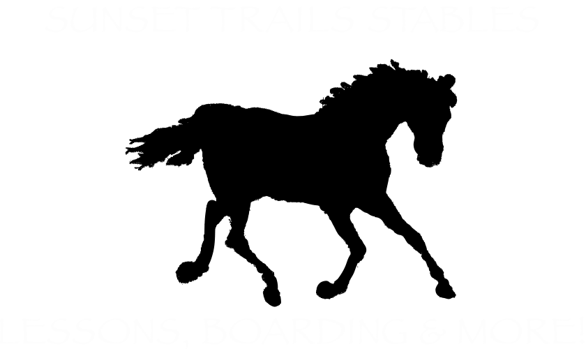 Sunset Trails Horse Stables | Lee's Summit, MO | Petting Zoo and Pony Ride Rentals | Pony Ride Birthday Party