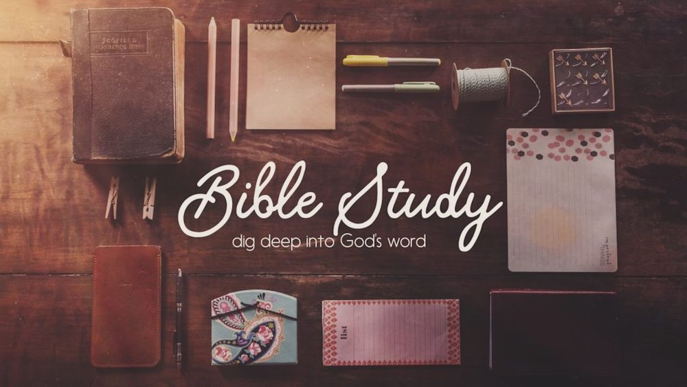 Sunday Mornings @ 8:45 - Each week we have eight adult Bible study classes on campus. We invite you to come and join us this week and dig into God's word with other believers.