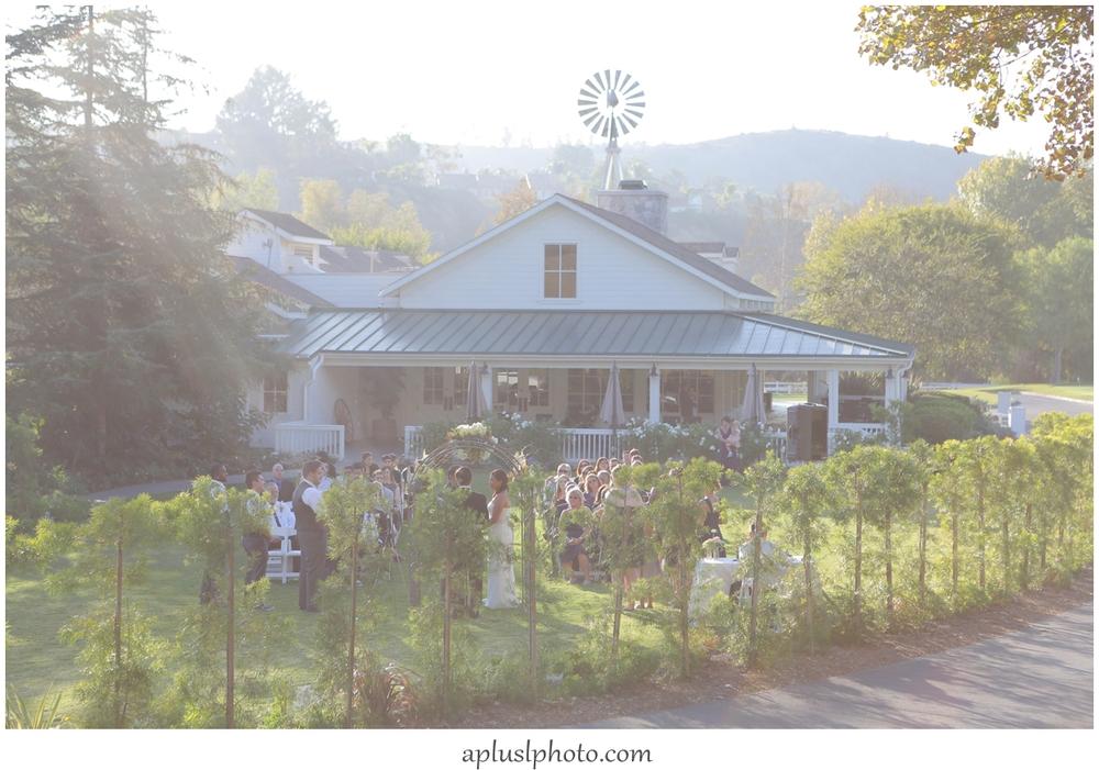 Strawberry Farms Wedding