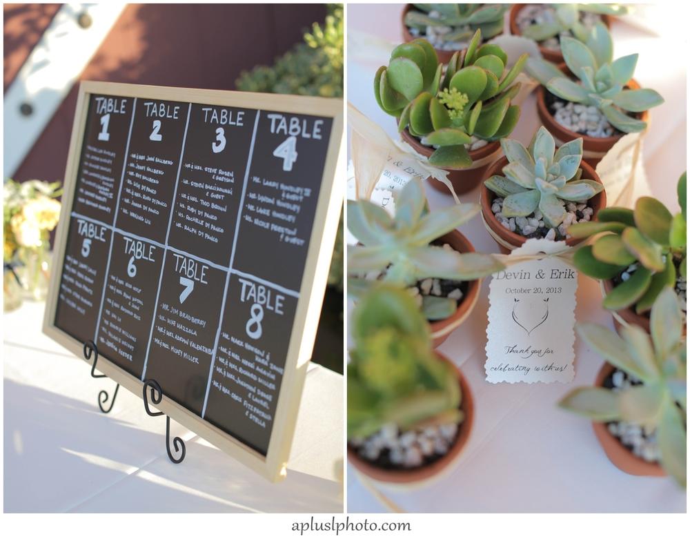 Wedding Succulents