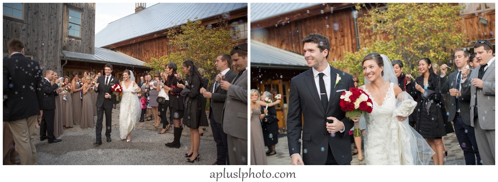 Recessional with Bubbles