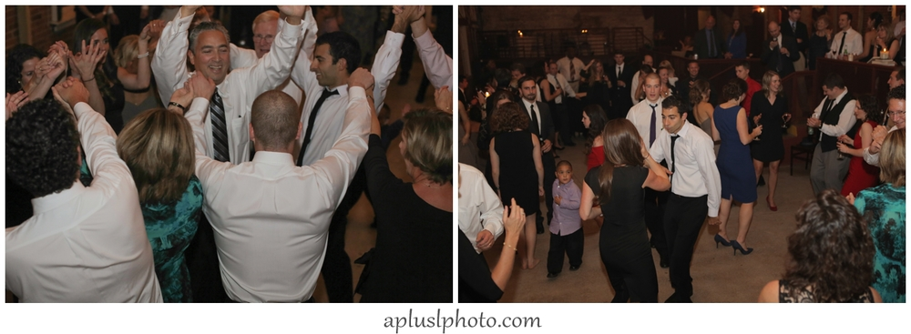 Wedding Horah Dance
