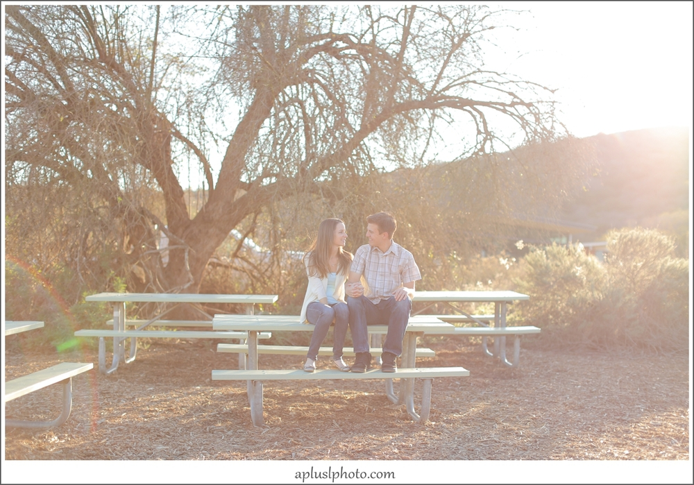 Laguna Canyon Engagement Session