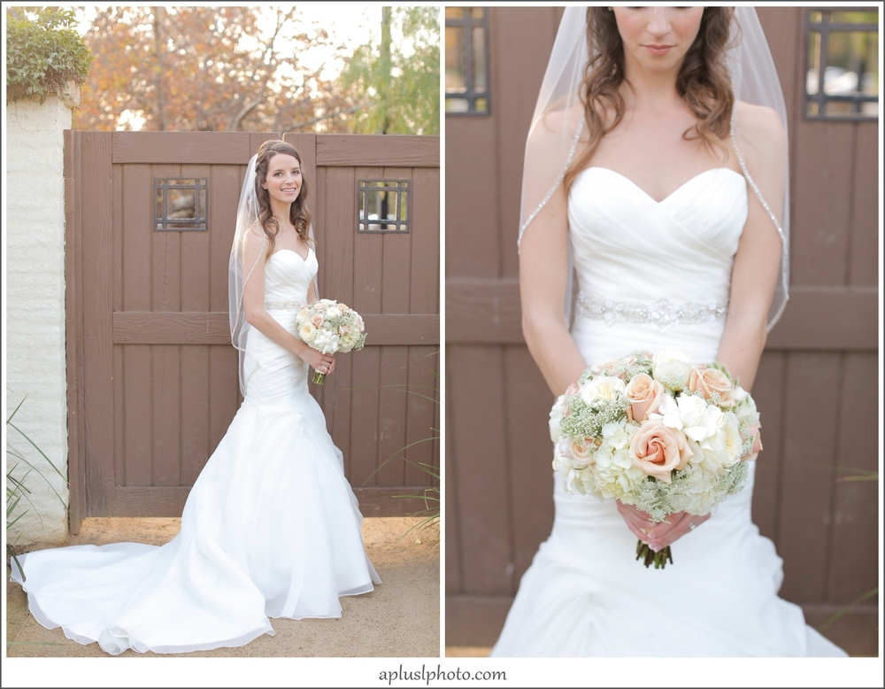 Orange County Wedding Photograpers