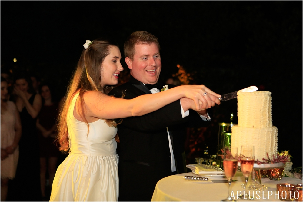 _APLUSLPHOTO_EMILY_TIM_WEDDING_0100.jpg