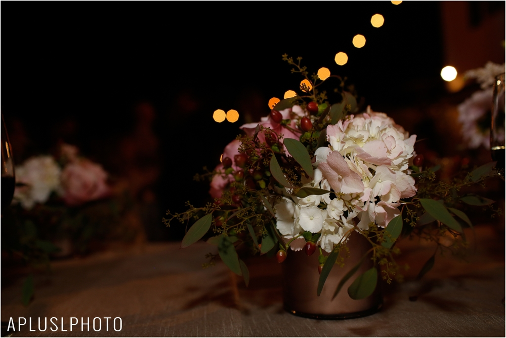 _APLUSLPHOTO_EMILY_TIM_WEDDING_0106.jpg